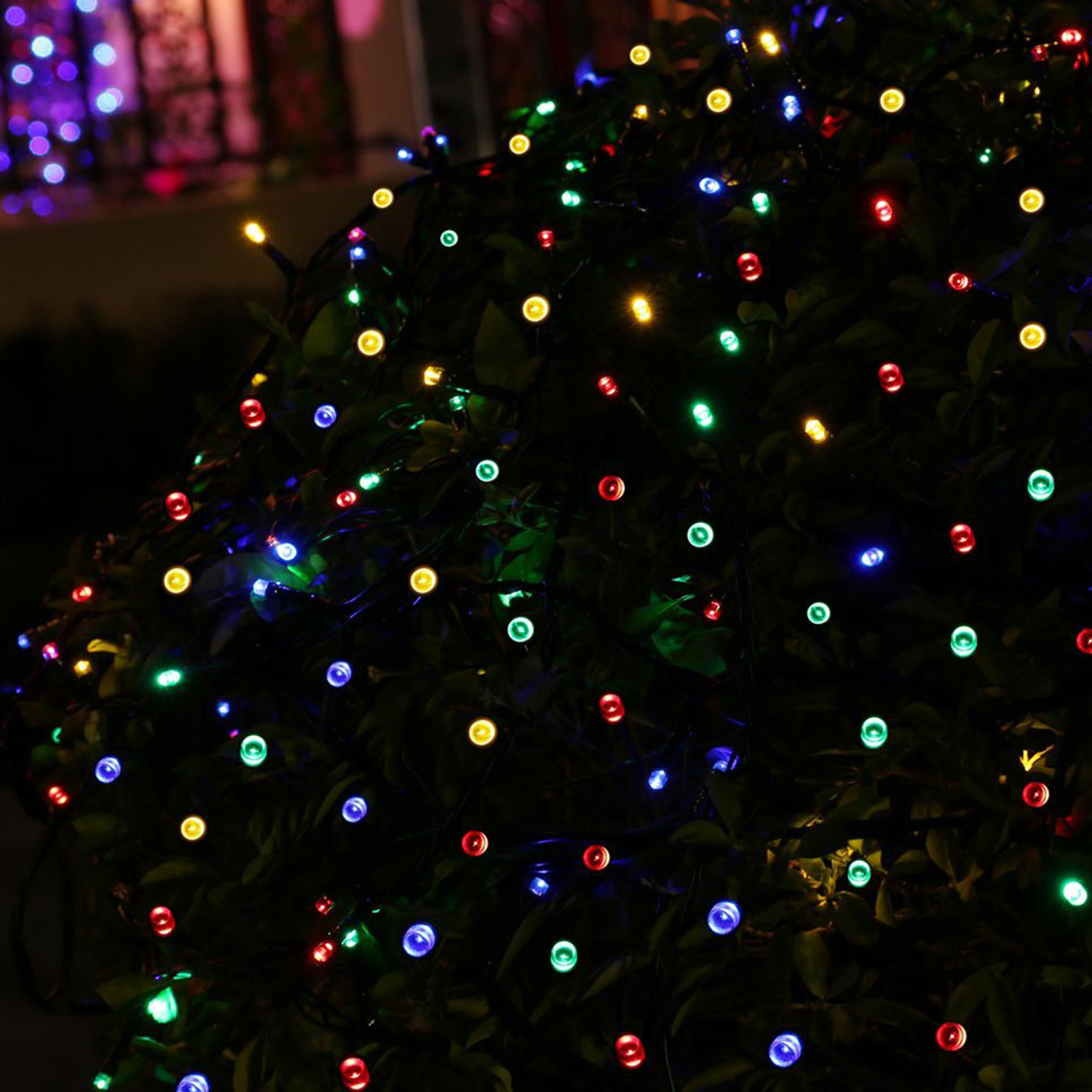 The Best Mix of Christmas Lights This Season